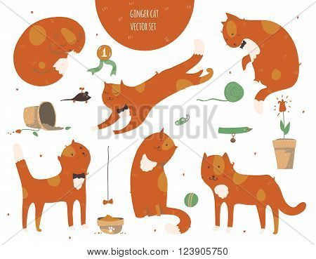Set of kind funky ginger cats isolated on white fun stylish. Vector illustration with cat accessories - food toys broken flower. Kittens are playing jumping sleeping and watching at butterfly.