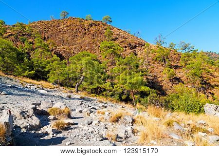 Olympos   The Hill In Asia Turkey  And Nature