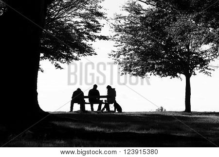 Three people sat on bench with trees around them