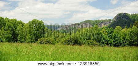 Beautiful green meadow and rocks in the Czech Switzerland