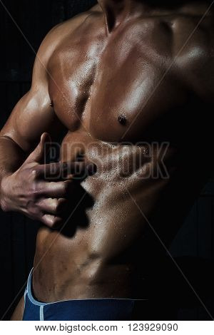 Male Splendid Muscular Bare Torso