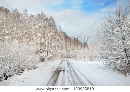 Rural snow-covered road along the forest. Winter landscape.