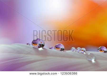 Orange and Purple Waterdrops on Colorful Background... ** Note: Soft Focus at 100%, best at smaller sizes