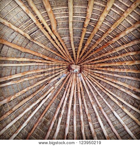 la madera es la gran estructura de la palapa