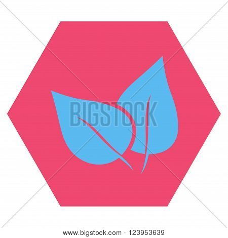 Flora Plant vector icon symbol. Image style is bicolor flat flora plant pictogram symbol drawn on a hexagon with pink and blue colors.