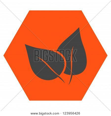 Flora Plant vector symbol. Image style is bicolor flat flora plant pictogram symbol drawn on a hexagon with orange and gray colors.