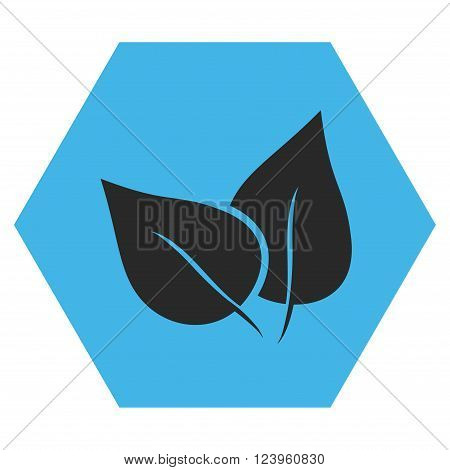 Flora Plant vector pictogram. Image style is bicolor flat flora plant icon symbol drawn on a hexagon with blue and gray colors.