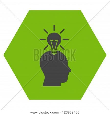 Genius Bulb vector icon. Image style is bicolor flat genius bulb pictogram symbol drawn on a hexagon with eco green and gray colors.