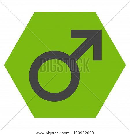 Male Symbol vector icon. Image style is bicolor flat male symbol iconic symbol drawn on a hexagon with eco green and gray colors.