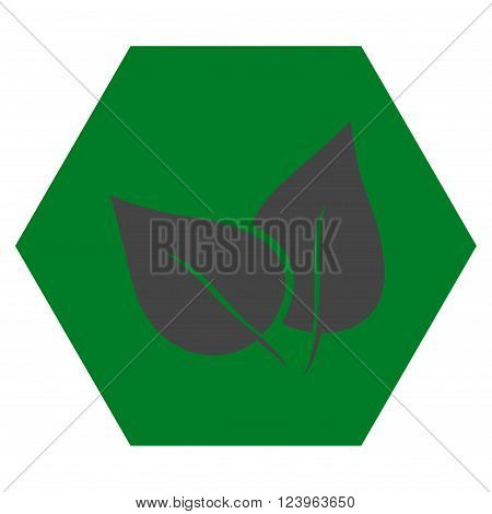 Flora Plant vector pictogram. Image style is bicolor flat flora plant icon symbol drawn on a hexagon with green and gray colors.