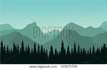Night forest with fir trees silhouettes and mountains