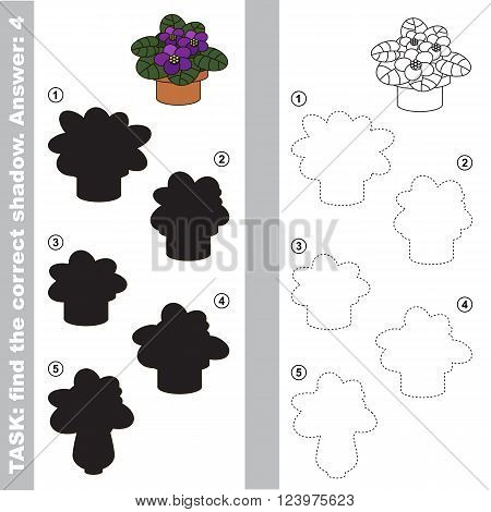 Violet with different shadows to find the correct one. Compare and connect object with it true shadow. Visual game for children.