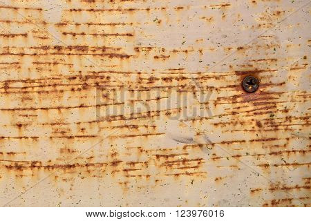 Rusty Iron Plate With Screw