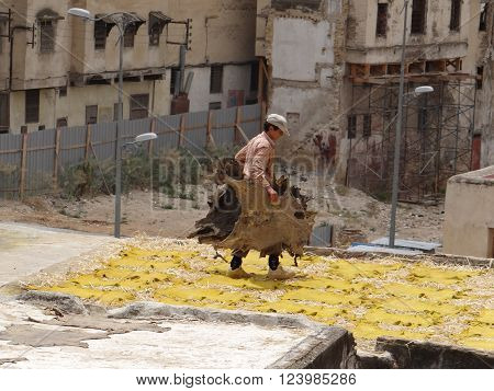 Fez, Morocco - May 31, 2013: Man walks on the roof of the building with the skins of animals. Below are the skins that are dried on the roof. Leather dyeing and tannery Shuar, on which there is a dressing and a skin preparation for subsequent fabrication.