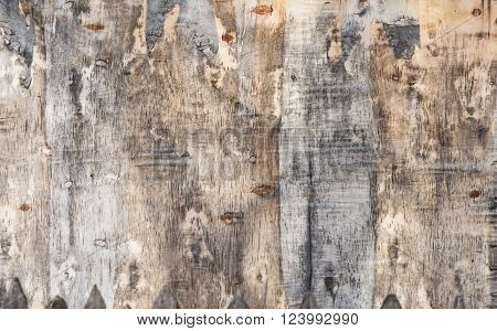 image of old plywood great as background