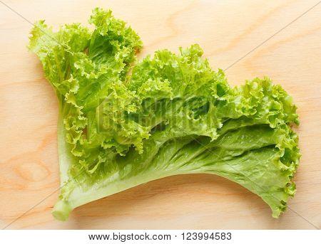 Lettuce Leaf On Chopping Board