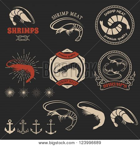 Set of shrimps meat labels. Shrimps icons. Shrimps meat labels emblems badges and design elements. Vector design element.