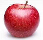 Постер, плакат: Спелый Красное яблоко Изолированные на белом фоне