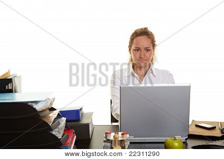 Business Woman Working On Laptop At Her Desk