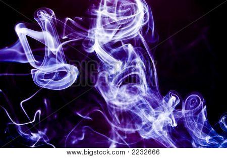 Wild Lilac Swirls