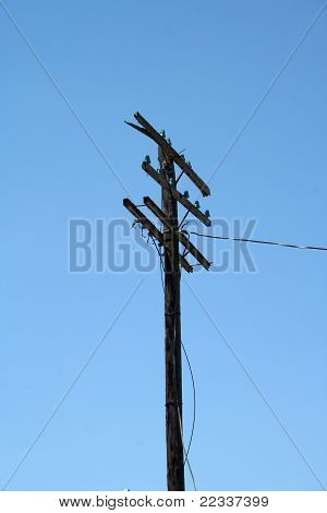 Old Telegraph Pole