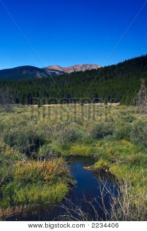 Mountain Stream In Colorado With Mountains