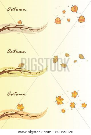 Autumn branches, vector illustration