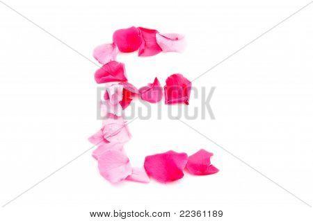 Pink Petal Letter - Capital E