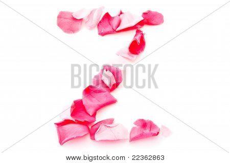 Pink Petal Letter - Capital Z