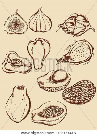Vintage Tropical Fruits