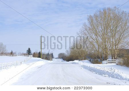Winter Country Road On The Farm