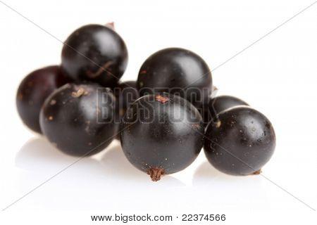 fresh blackcurrant isolated on white