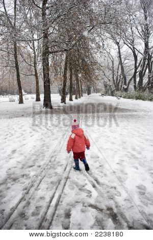 Winter In Hte Park