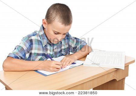 Schoolboy Doing Homework