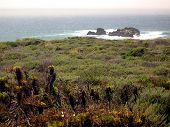image of amtrak  - View of California coast from Coast Starlight - JPG