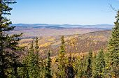Ester Dome In Fall