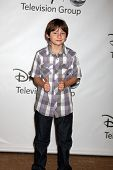 LOS ANGELES - AUG 7:  Jared Gilmore at the Disney/ABC Television Group Summer Press Tour at the Beve