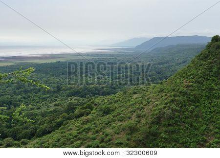Lake Manyara National Park In Africa