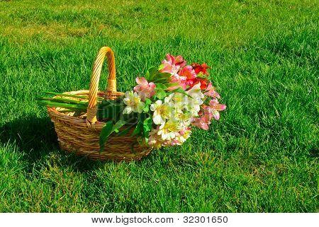 bouquet of beautiful alstroemeria flowers in a basket