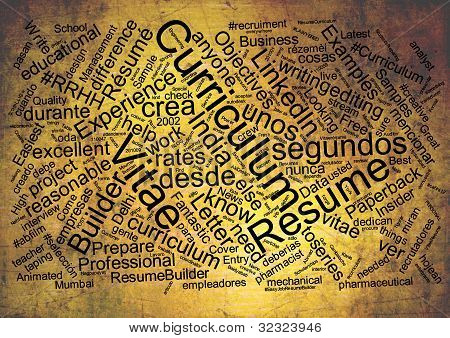 Curriculum Vitae Word Cloud