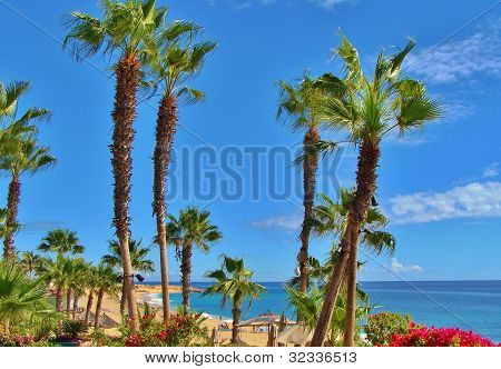 Cabo San Lucas Resort Beach