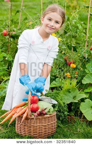 Vegetable garden - lovely gardener with  the basket of gathered vegetables