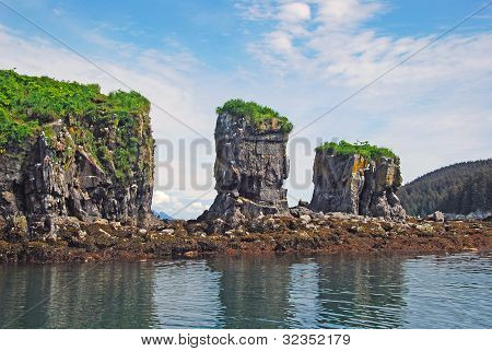 Coastal Bird Rock