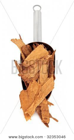 Astragalus root used in traditional chinese herbal medicine in a metal scoop over white background. Used to speed healing and treat diabetes. Zhi huang qui. Astragali radix.