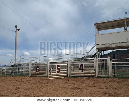 Open Rodeo Gate