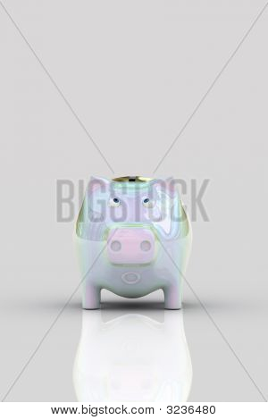 Shocked Pig