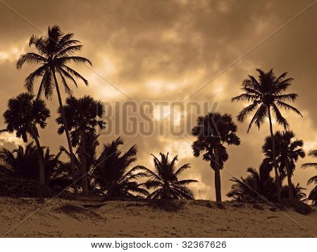 Carribean Evening Scenery