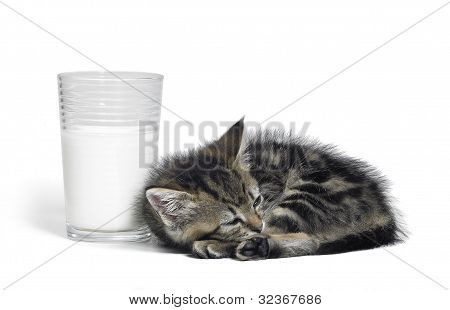 Kitten Besides A Glass Of Milk
