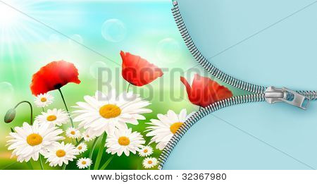 Nature background with summer flowers and open zipper. Raster version of vector.