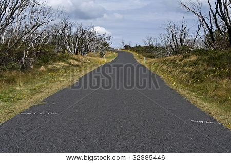 Road In Mt Kosciuszko National Park, New South Wales, Australia.